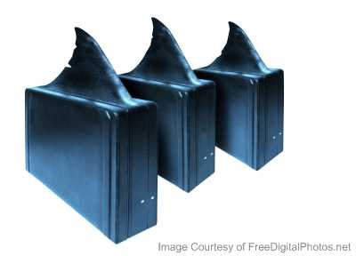 briefcases with shark fins